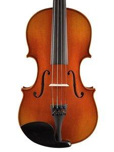 chinese viool set  in alle maten